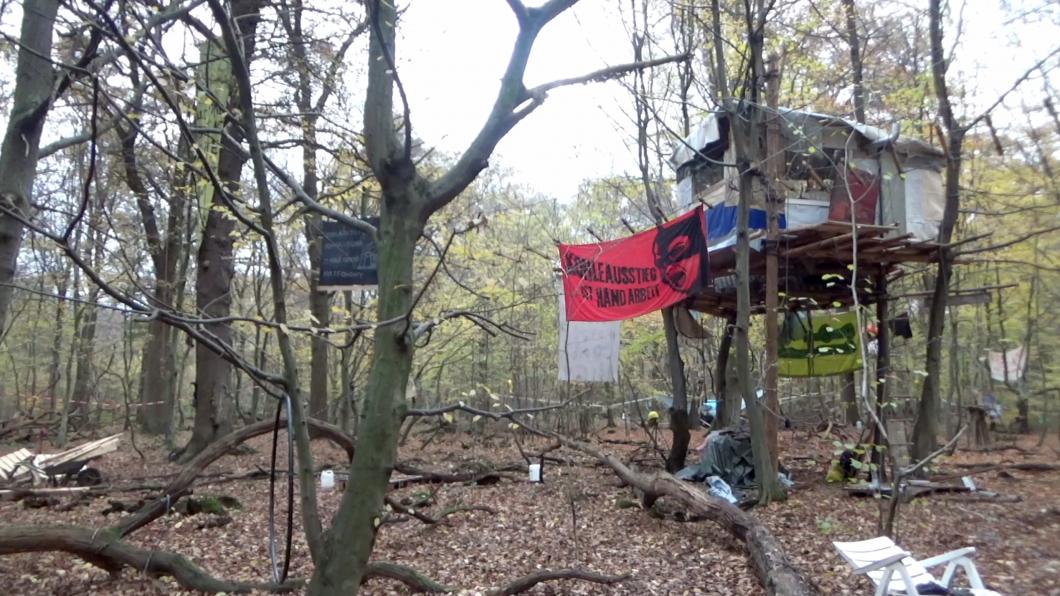 Hambacher Forst, NRW, November 2017. Junge Leute haben den Wald besetzt