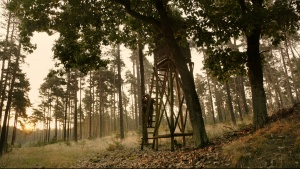 Filmtipp: Auf der Jagd