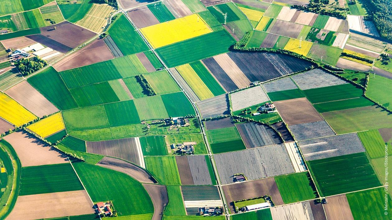 Wochenthema - Landwirtschaft