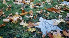 """sternförmiger Grabstein am Kindergrabmal Hanau mit der Aufschrift """"April 2015"""""""