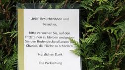 Foto zeigt Hinweisschild in einem Park, dass die Besucher bitte auf den Trittsteinen bleiben, um Bodendeckerpflanzen die Chance zu geben, ungestört zu wachsen.