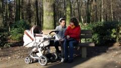 Socius-Projekt Frankfurt