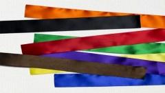 "Mehr Farben? Aus einem Video der Initiative ""More Color More Pride"""