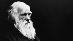 Charles Darwin (Foto um 1875)