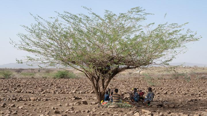 Äthiopien: Der weite Weg zur Wasserstelle