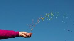 """Bild zeigt ausgestrecktem Arm, der Saat in Regenbogenfarben verstreut. Es ist ein Detailbild aus dem Buchcover zu """"Aufgehende Saat. 40 Jahre Ökumenische Arbeitsgruppe Homosexuelle und Kirche"""""""