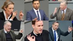 AfD Politiker im Bundetag