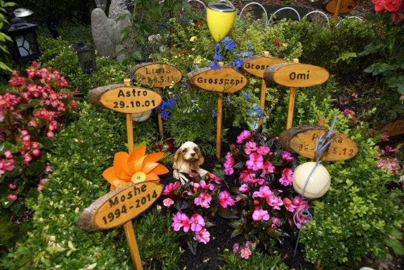 vier Urnen von Hunden