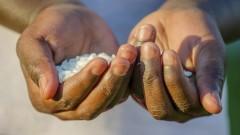 Hände halten Reiskörner