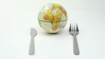 Welthungerbericht, Hunger