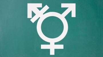Symbol für Transsexualität auf einer Kreidetafel.