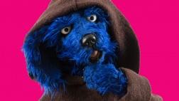 Tölpel, der blaue Hund, ist der wohl treueste Wegbegleiter von Martin Luther