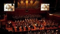 """Roma und Sinti Philharmoniker spielen das """"Requiem für Auschwitz"""" in der Frauenkirche in Dresden."""