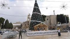 Weihnachtsbaum auf dem Manger Platz vor der Geburtskirche in Bethlehem am 17.12.2015.