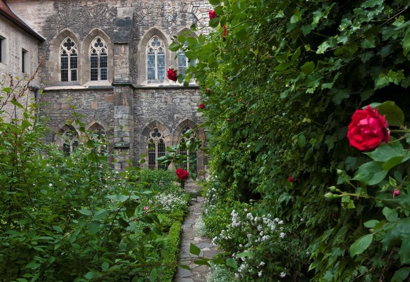 Rosen am und im Kloster