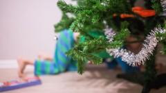 Ein Kind sucht unter dem Weihnachtsbaum nach Geschenken.