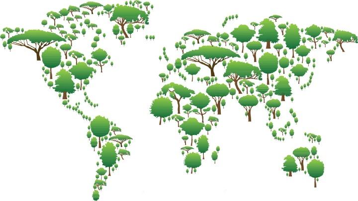 Kirchen rufen zu maßvolleren Umgang mit der Umwelt auf, um Klimawandel, Verlust der Artenvielfalt und wachsenden Abfallbergen entgegen zu wirken.