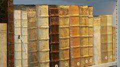 Alte Bücher stehen in einem Regal in der Bibliothek des Tübinger Stifts