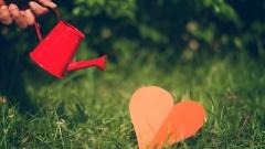 Hand mit Gieskanne über einem roten Herz aus Papier, das im Gras liegt.