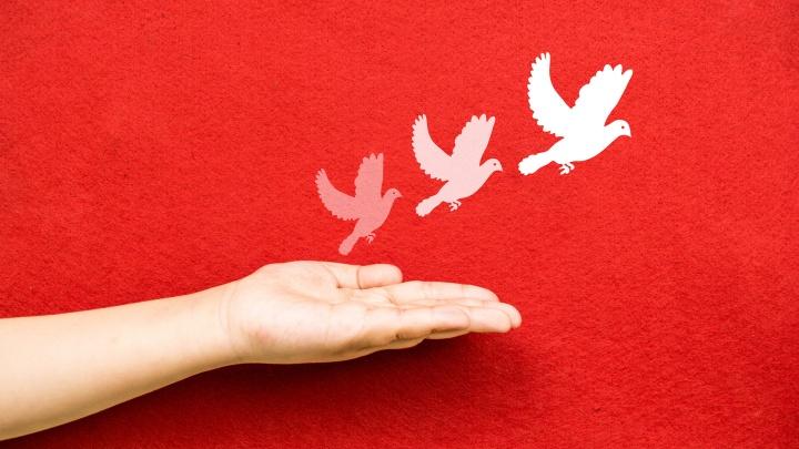 Ausgestreckte Hand unter einer Zeichnung von weißen Tauben auf einer roten Wand als Friedenssymbol.