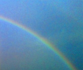 regenbogen_wien.jpg