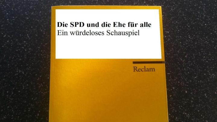 spd_6.jpg