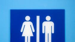 Gleichberechtigung, Gleichstellung