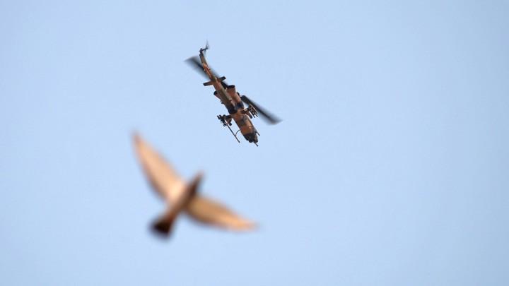 Taube und Militärhubschrauber am Himmel.